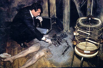 「Spontaneous Human Combustion」の画像検索結果