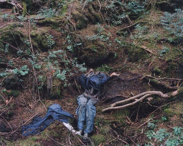 """Aokigahara, la storia vera della """"foresta dei suicidi"""""""